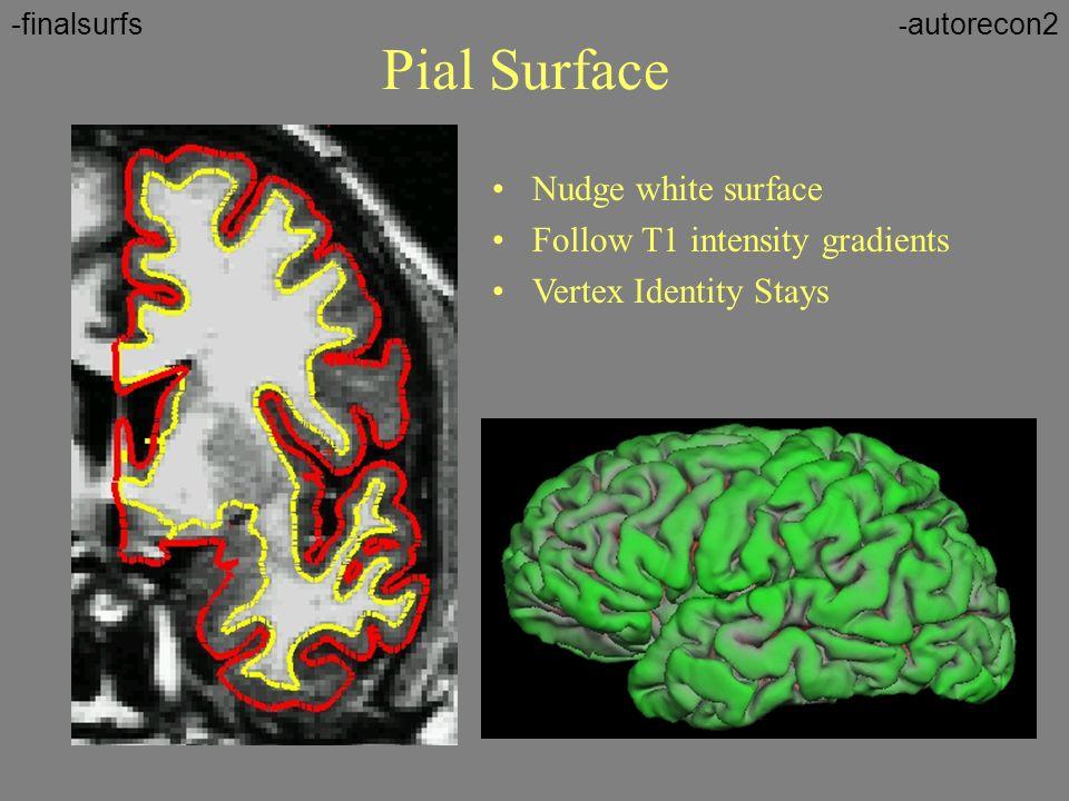 Pial Surface Nudge white surface Follow T1 intensity gradients Vertex Identity Stays - autorecon2-finalsurfs