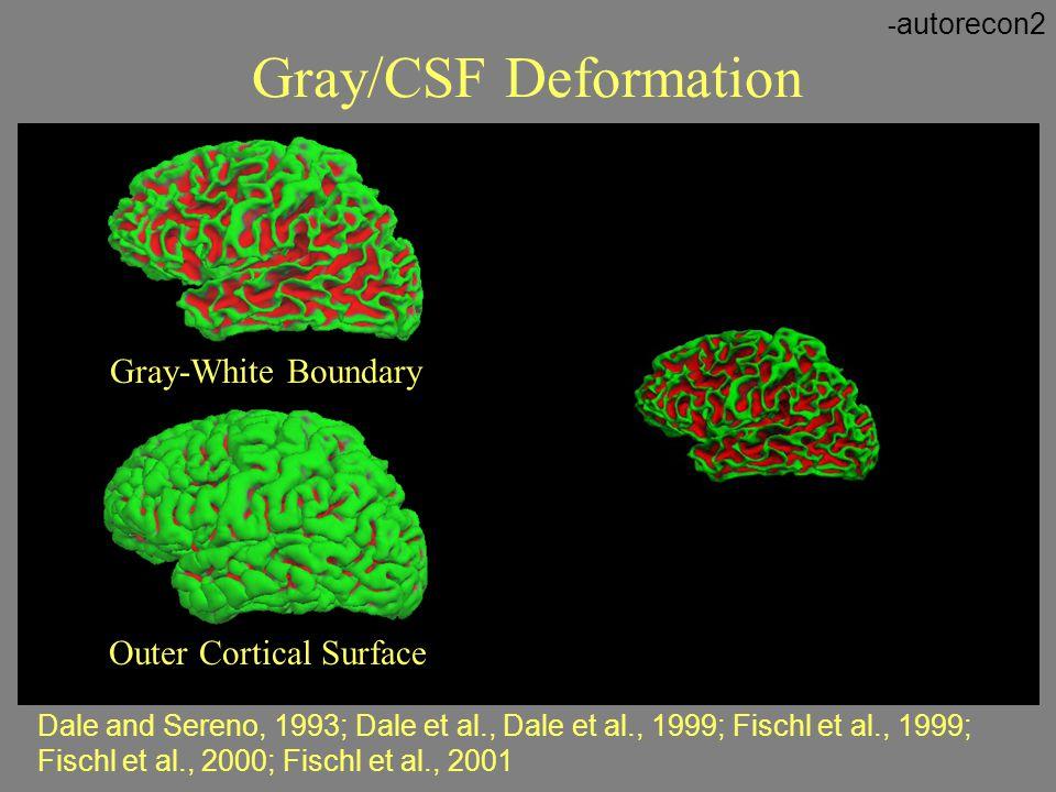 Gray-White Boundary Outer Cortical Surface Dale and Sereno, 1993; Dale et al., Dale et al., 1999; Fischl et al., 1999; Fischl et al., 2000; Fischl et