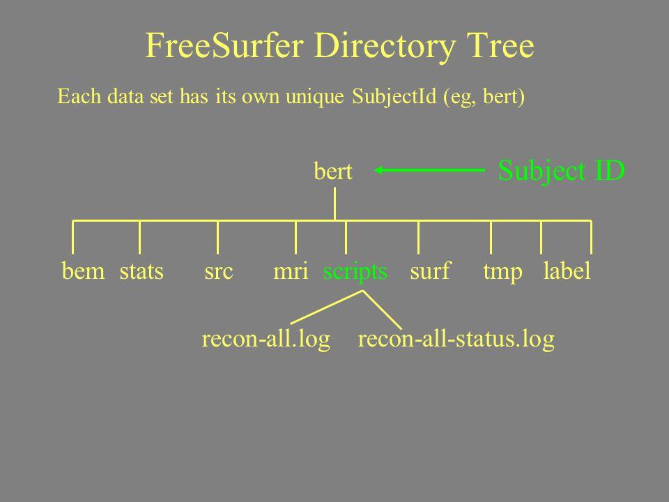FreeSurfer Directory Tree Subject ID Each data set has its own unique SubjectId (eg, bert) bert bem stats src mri scripts surf tmp label recon-all.log