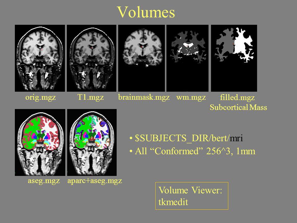 "Volumes orig.mgz $SUBJECTS_DIR/bert/mri All ""Conformed"" 256^3, 1mm aseg.mgz T1.mgzbrainmask.mgzwm.mgz filled.mgz Subcortical Mass aparc+aseg.mgz Volum"
