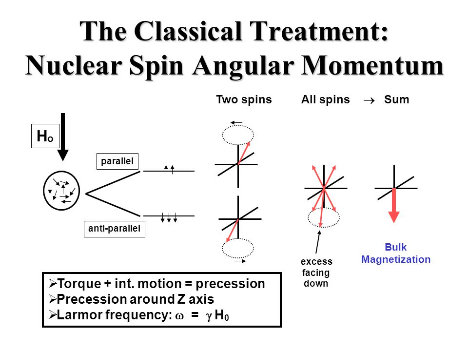 The Classical Treatment: Nuclear Spin Angular Momentum HoHo anti-parallel parallel  Torque + int.