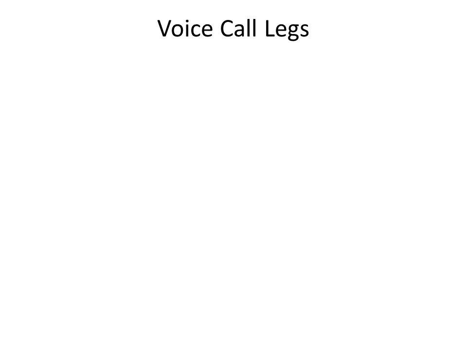 Voice Call Legs