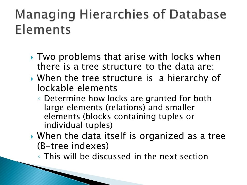  A database element can be a relation, block or a tuple  Different systems use different database elements to determine the size of the lock  Thus some may require small database elements such as tuples or blocks and others may require large elements such as relations
