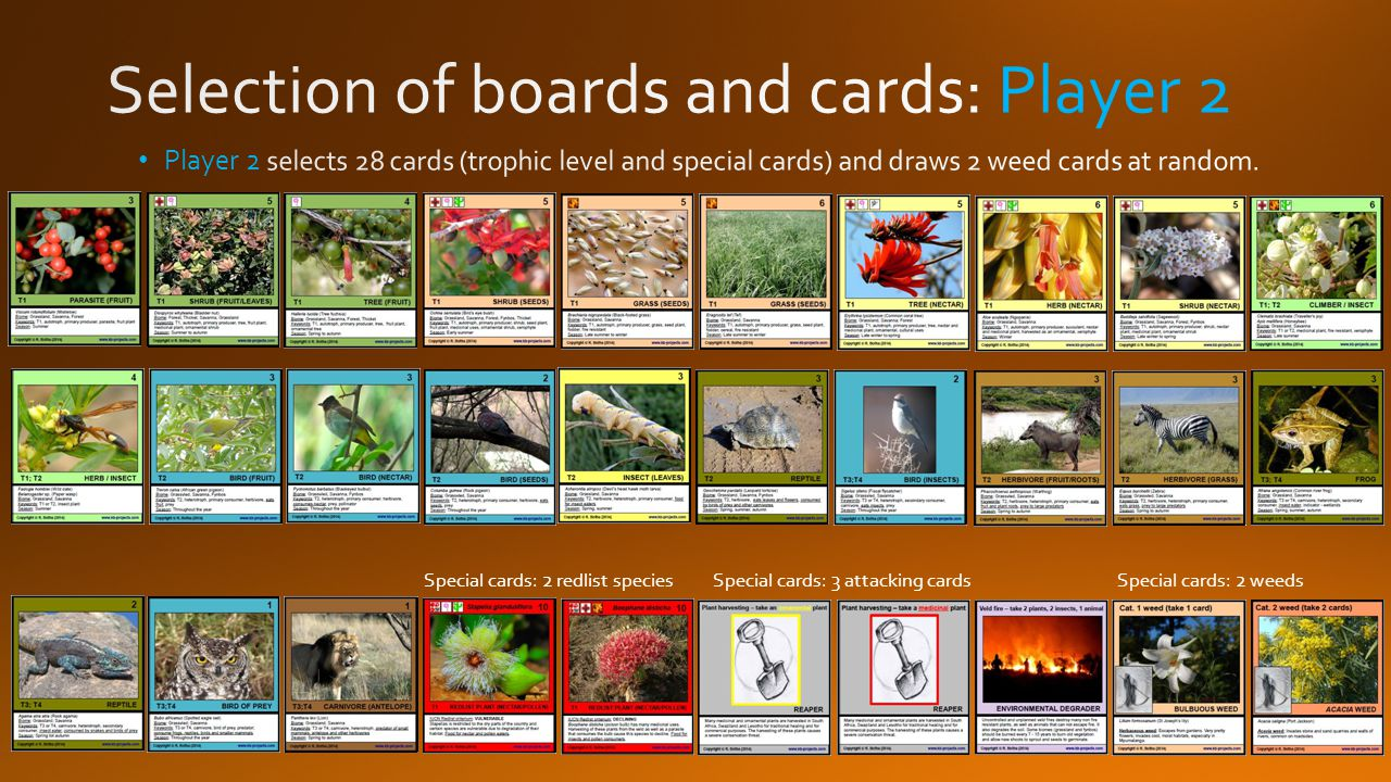 Special cards: 2 redlist species Special cards: 3 attacking cardsSpecial cards: 2 weeds