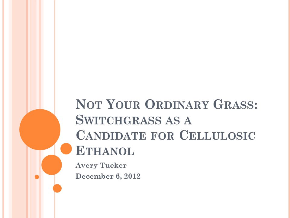N OT Y OUR O RDINARY G RASS : S WITCHGRASS AS A C ANDIDATE FOR C ELLULOSIC E THANOL Avery Tucker December 6, 2012