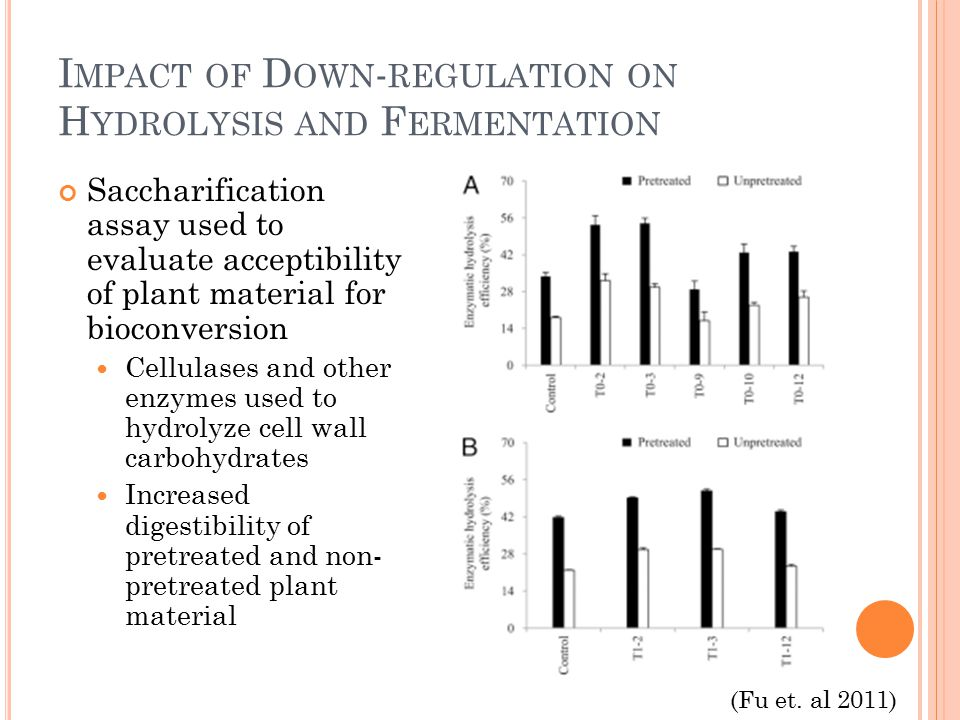 I MPACT OF D OWN - REGULATION ON H YDROLYSIS AND F ERMENTATION Saccharification assay used to evaluate acceptibility of plant material for bioconversion Cellulases and other enzymes used to hydrolyze cell wall carbohydrates Increased digestibility of pretreated and non- pretreated plant material (Fu et.