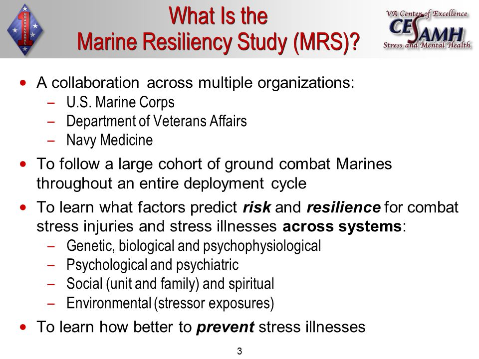 3 What Is the Marine Resiliency Study (MRS).