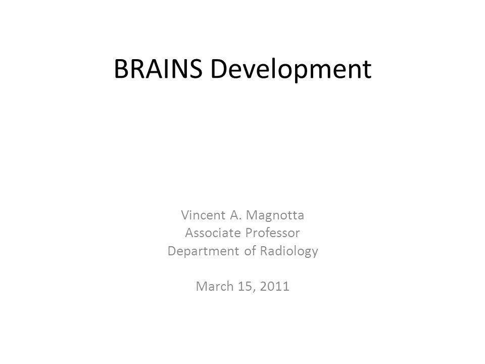 BRAINS Development Vincent A. Magnotta Associate Professor Department of Radiology March 15, 2011