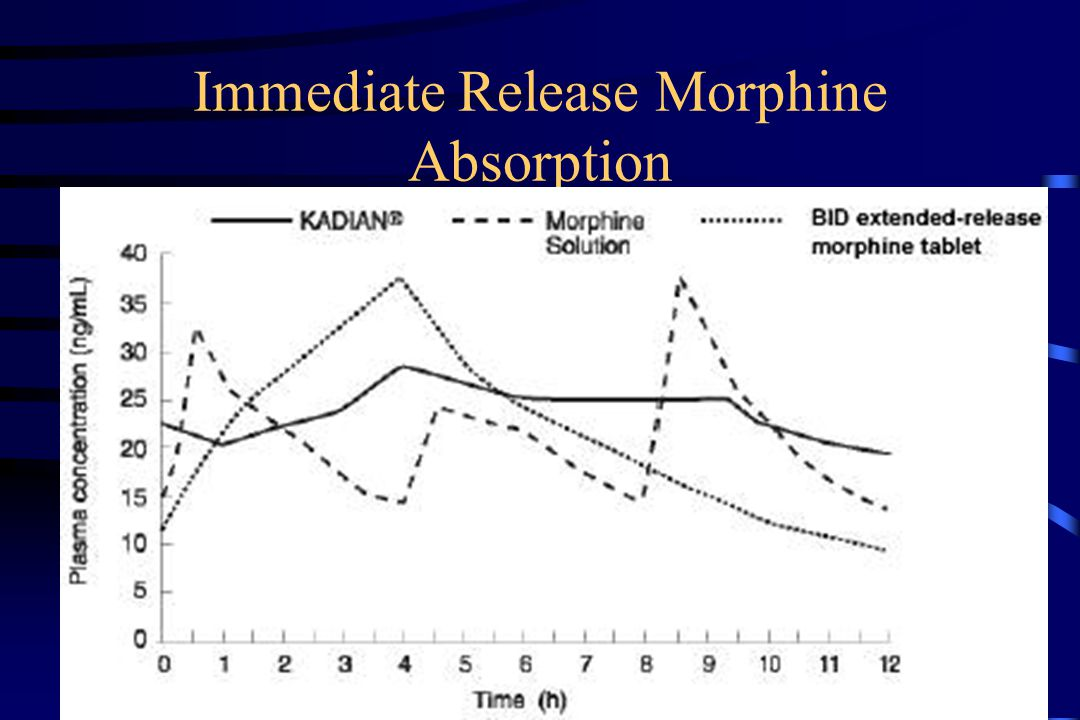 Immediate Release Morphine Absorption
