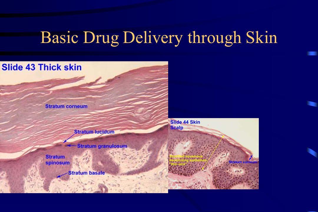 Basic Drug Delivery through Skin