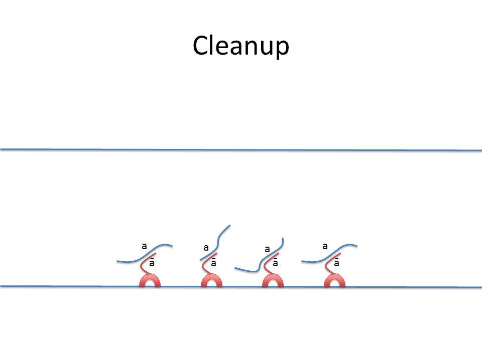 āāāā a a a a Cleanup
