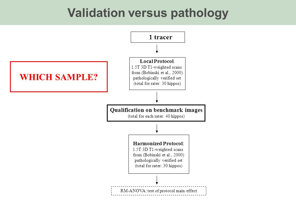 Validation versus pathology Local Protocol : 1.5T 3D T1-weighted scans from (Bobinski et al., 2000) pathologically verified set (total for rater: 30 h