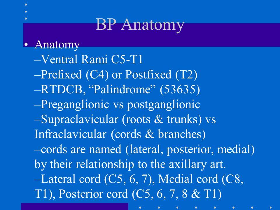 "BP Anatomy Anatomy –Ventral Rami C5-T1 –Prefixed (C4) or Postfixed (T2) –RTDCB, ""Palindrome"" (53635) –Preganglionic vs postganglionic –Supraclavicular"