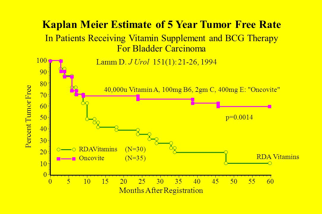 Kaplan Meier Estimate of 5 Year Tumor Free Rate Lamm D.