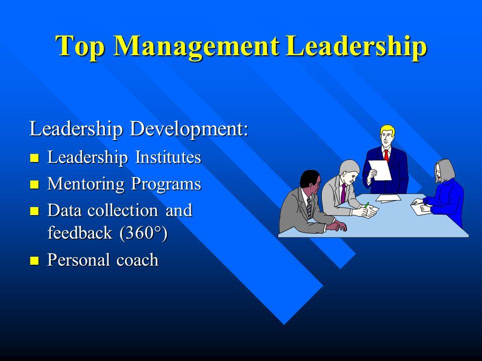 Top Management Leadership Leadership Development: Leadership Institutes Leadership Institutes Mentoring Programs Mentoring Programs Data collection an