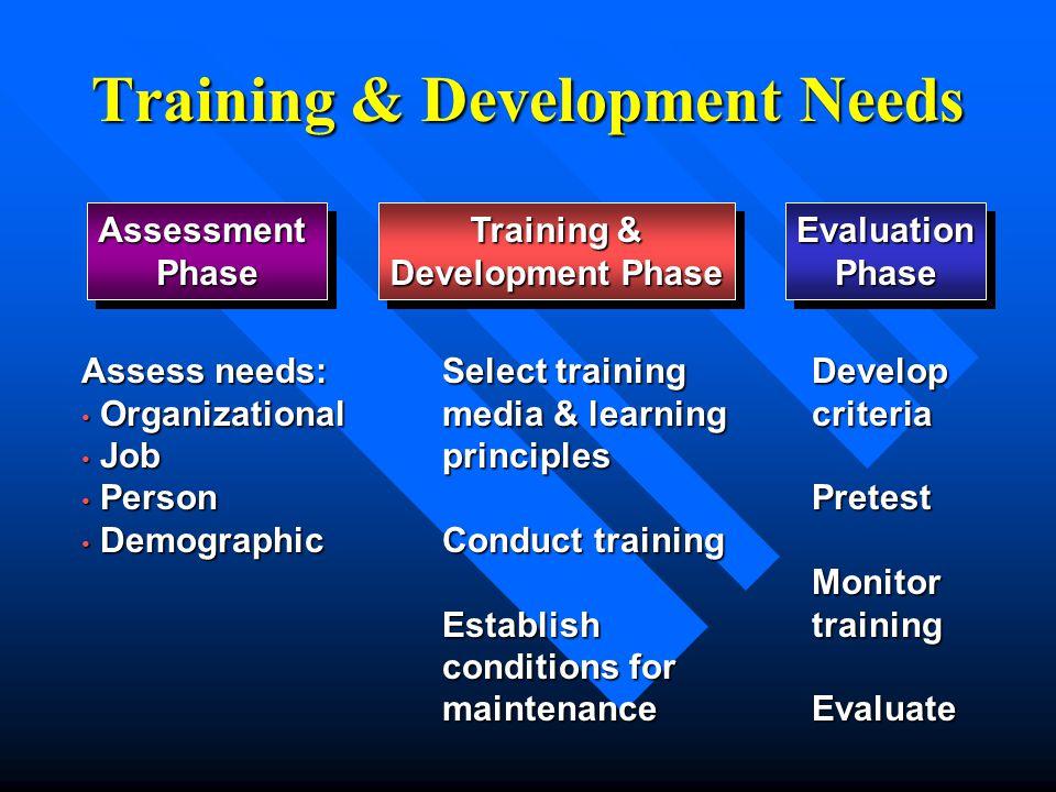 Training & Development Needs AssessmentPhaseAssessmentPhase Training & Development Phase Training & Development Phase EvaluationPhaseEvaluationPhase A