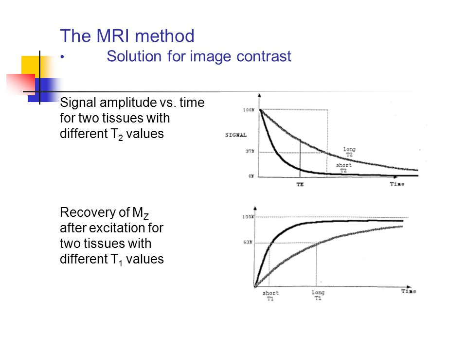 The MRI method Solution for image contrast Signal amplitude vs. time for two tissues with different T 2 values Recovery of M Z after excitation for tw