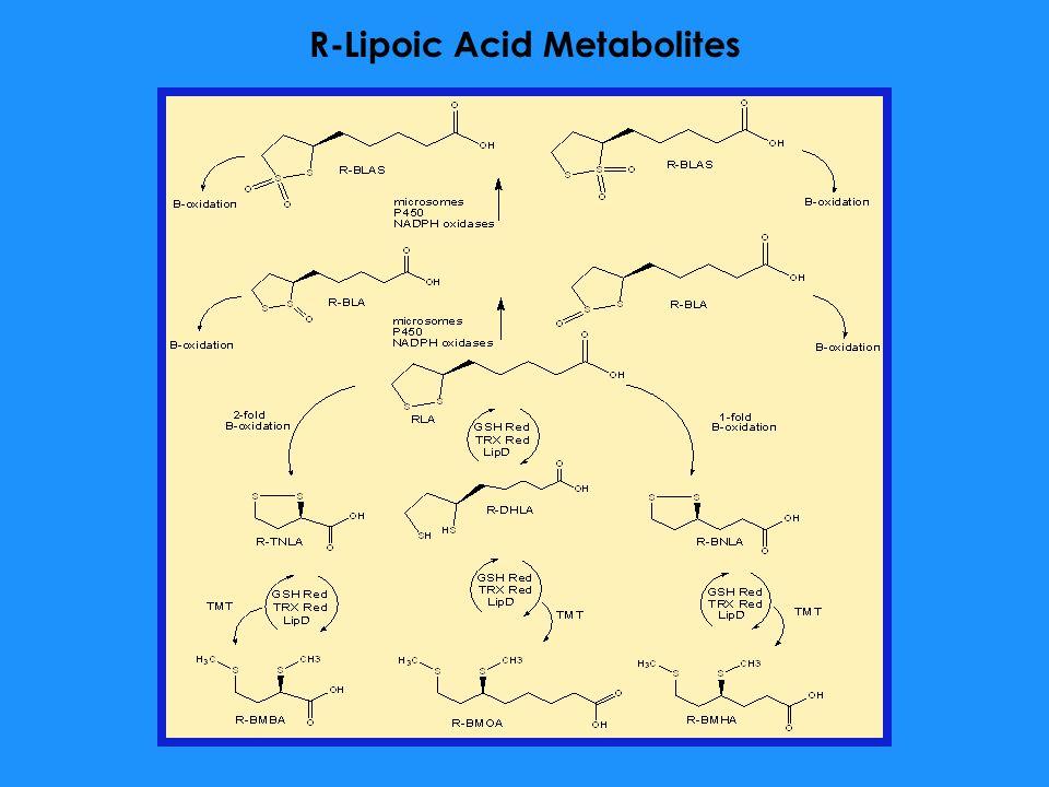 R-Lipoic Acid Metabolites