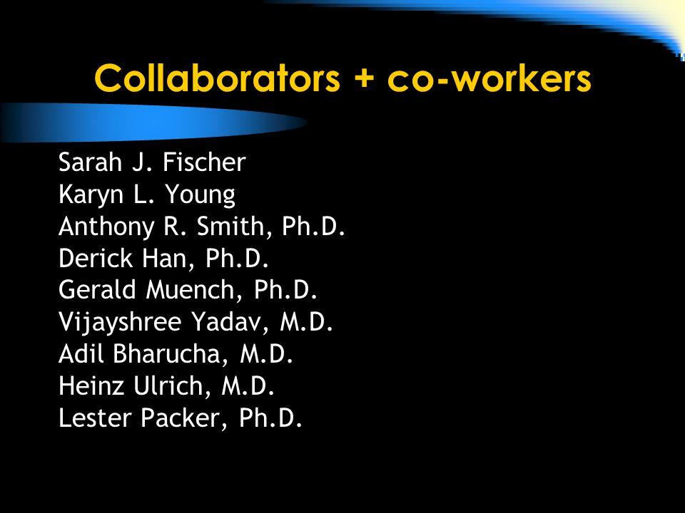 Collaborators + co-workers Sarah J. Fischer Karyn L.