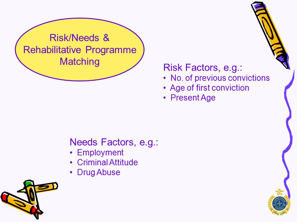 """Risk/Needs & Rehabilitative Programme Matching Risk Historical Factors Actuarial based """"Static"""" Risk Needs Personal / interpersonal Factors Personal D"""