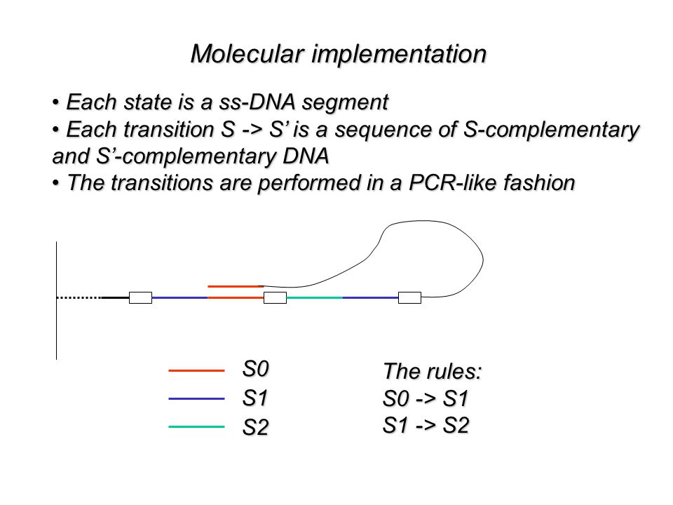 Molecular implementation Each state is a ss-DNA segment Each state is a ss-DNA segment Each transition S -> S' is a sequence of S-complementary Each transition S -> S' is a sequence of S-complementary and S'-complementary DNA The transitions are performed in a PCR-like fashion The transitions are performed in a PCR-like fashionS0S1 S2 The rules: S0 -> S1 S1 -> S2 An Input
