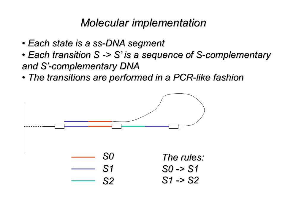 Molecular implementation Each state is a ss-DNA segment Each state is a ss-DNA segment Each transition S -> S' is a sequence of S-complementary Each transition S -> S' is a sequence of S-complementary and S'-complementary DNA The transitions are performed in a PCR-like fashion The transitions are performed in a PCR-like fashionS0S1 S2 The rules: S0 -> S1 S1 -> S2
