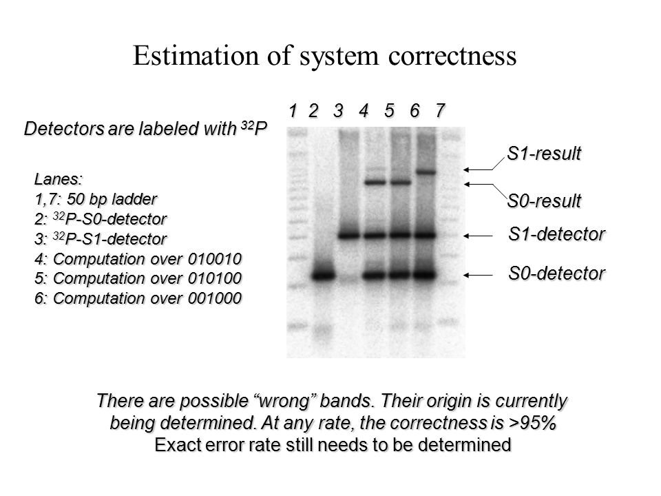Proof of Mechanism A complete mixture: Input (010100) ; S0-detector; S1-detector; T1,T2,T3,T4; Fok I; T4 DNA Ligase The gel shows a component removal experiment, where each component was omitted from the complete mixture and the result was compared to the predicted outcome 1 2 3 4 5 6 7 8 9 10 11 12 1 2 3 4 5 6 7 8 9 10 11 12 1,12: 50 bp ladder 2: complete mixture 3: No Input 4: No S0-detector 5: No S1-detector 6: No T1 7: No T2 8: No T3 9: No T4 10: No Fok I 11: No T4 DNA Ligase PredictedActual +--+------+--+- ---- Result band