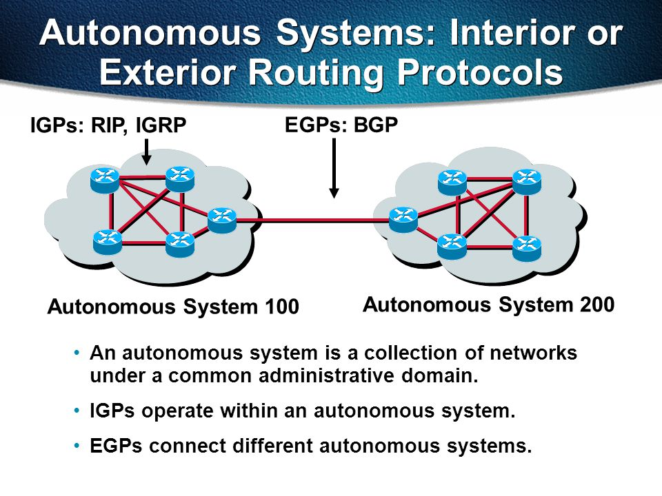 Autonomous System 100 Autonomous System 200 IGPs: RIP, IGRP EGPs: BGP Autonomous Systems: Interior or Exterior Routing Protocols An autonomous system is a collection of networks under a common administrative domain.