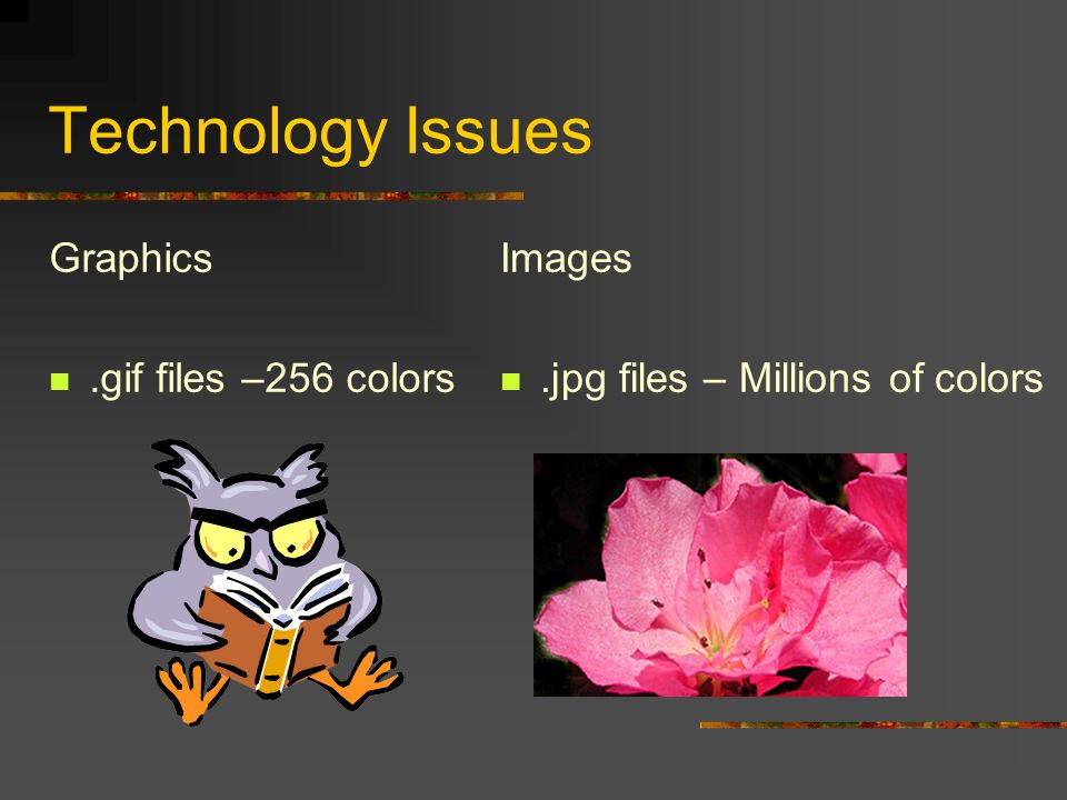 Technology Issues Graphics.gif files –256 colors Images.jpg files – Millions of colors