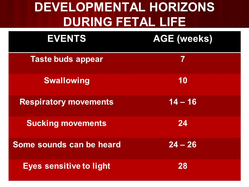 DEVELOPMENTAL HORIZONS DURING FETAL LIFE EVENTSAGE (weeks) Taste buds appear7 Swallowing10 Respiratory movements14 – 16 Sucking movements24 Some sounds can be heard24 – 26 Eyes sensitive to light28
