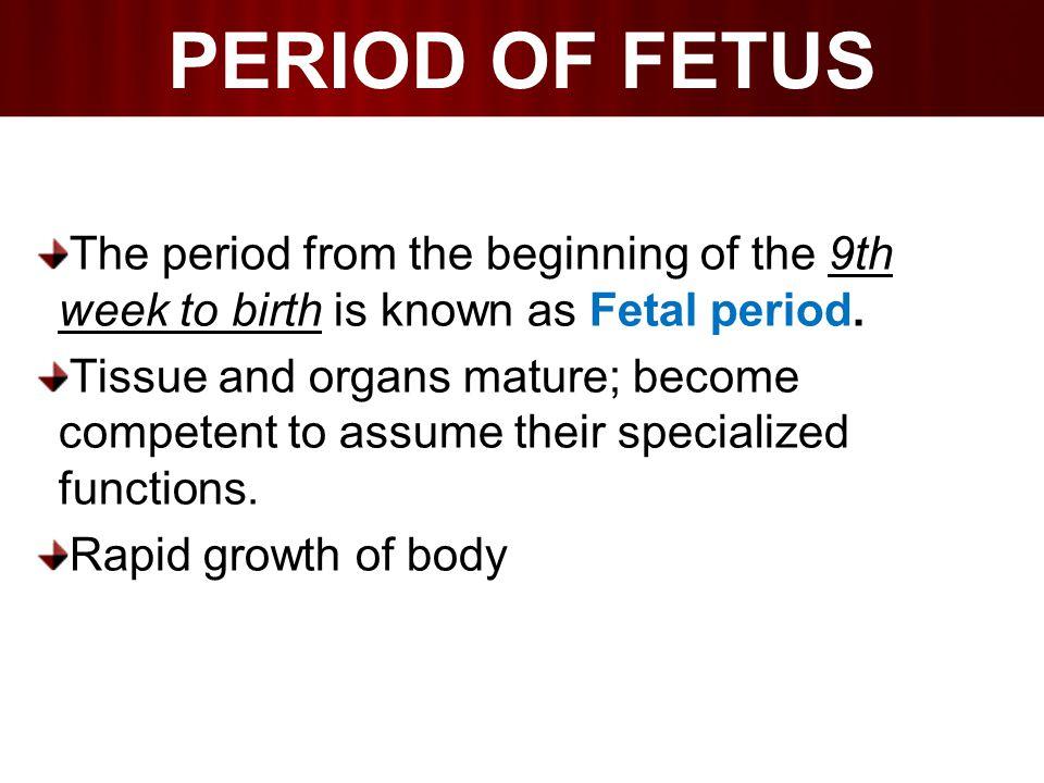  Transformation of embryo to fetus is gradual.