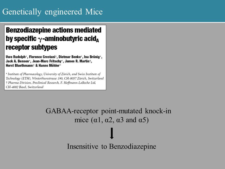 Genetically engineered Mice GABAA-receptor point-mutated knock-in mice (α1, α2, α3 and α5) Insensitive to Benzodiazepine