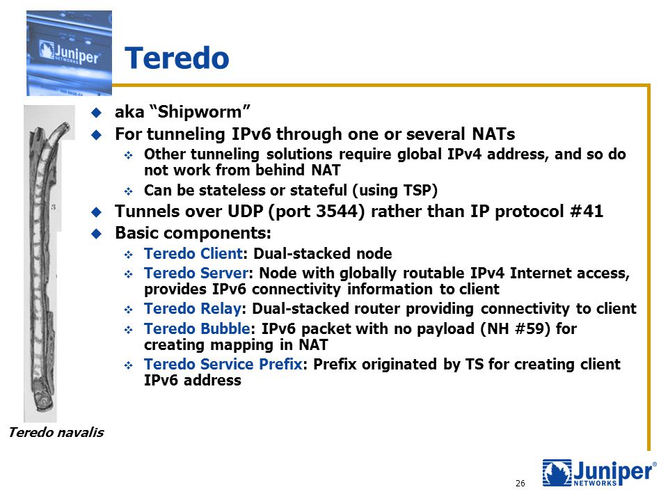 """http://www.juniper.net Copyright © 2003 Juniper Networks, Inc. 26 Teredo  aka """"Shipworm""""  For tunneling IPv6 through one or several NATs  Other tun"""