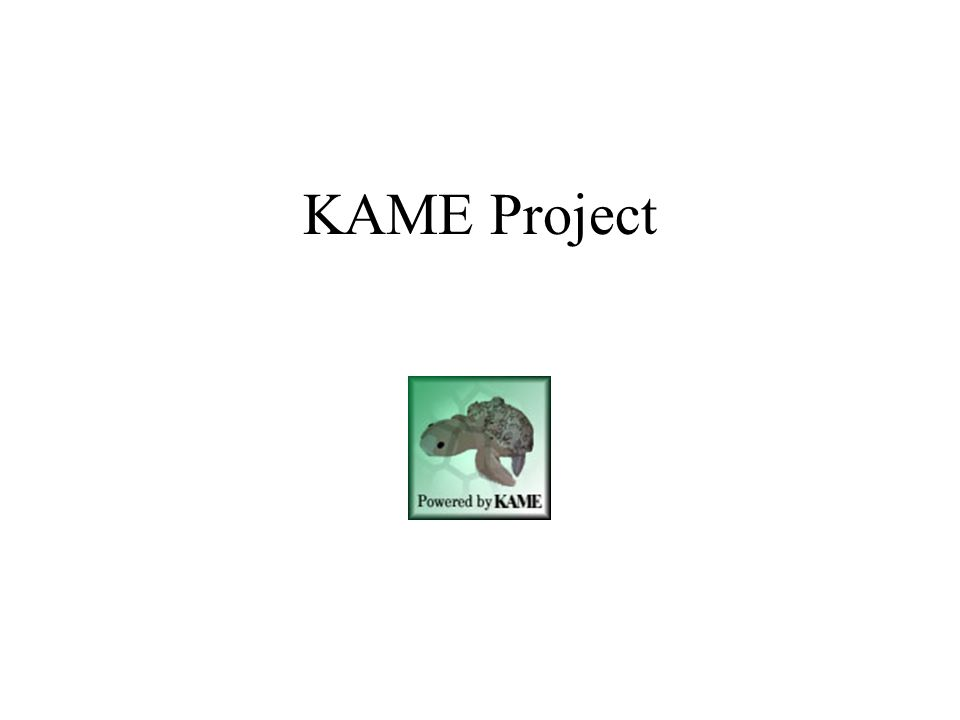 KAME Project