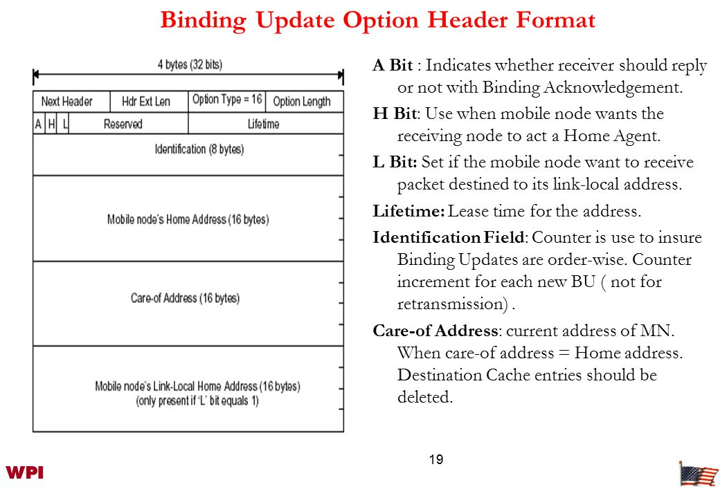 19 Binding Update Option Header Format A Bit : Indicates whether receiver should reply or not with Binding Acknowledgement.