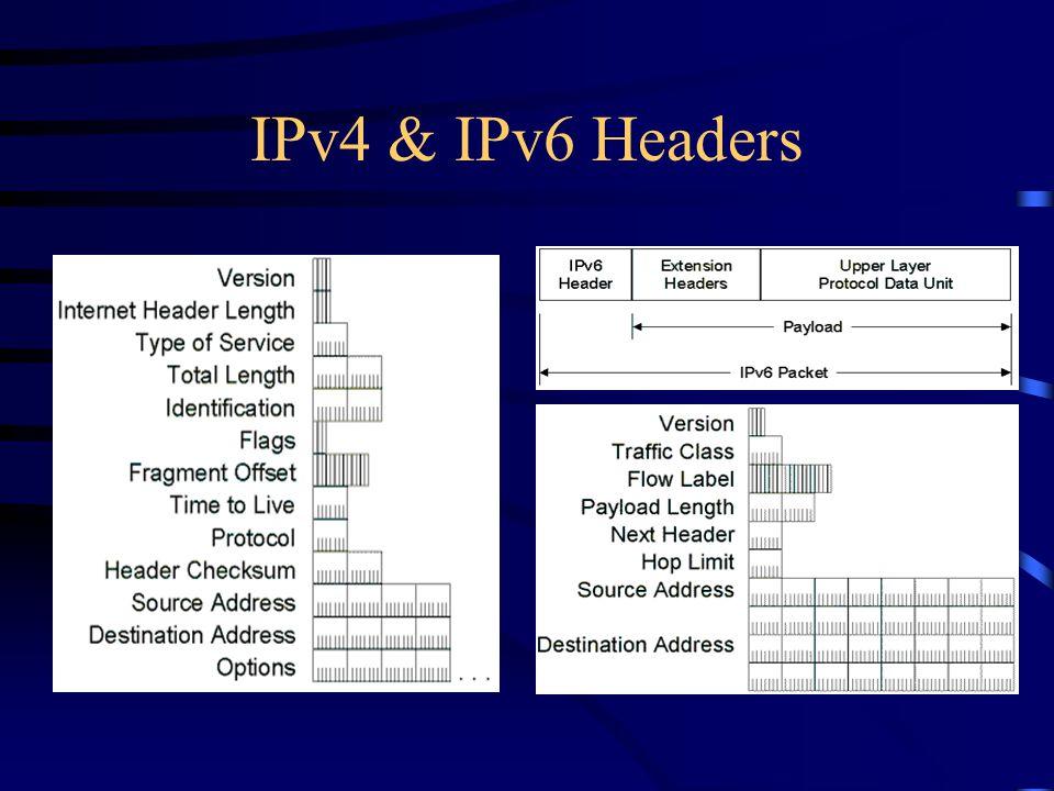 IPv4 & IPv6 Headers