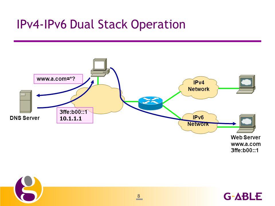 8 IPv4-IPv6 Dual Stack Operation DNS Server www.a.com=*.