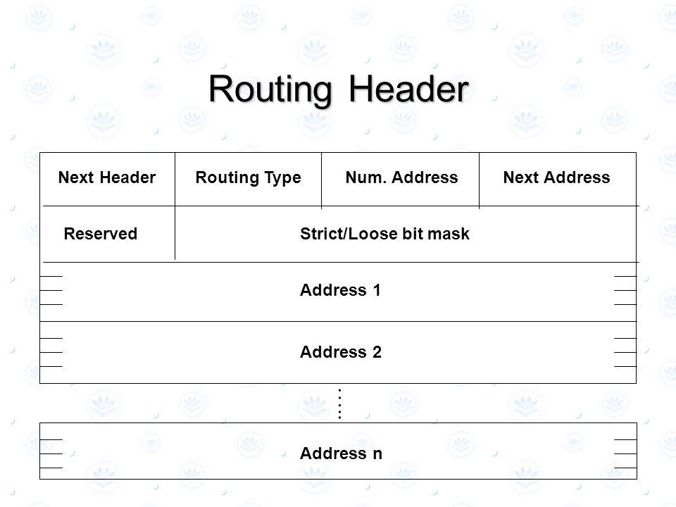 Routing Header Next HeaderRouting TypeNum.