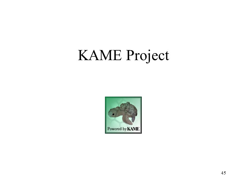 KAME Project 45