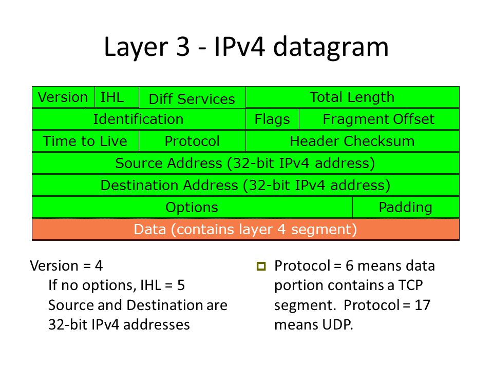 Layer 3 - IPv4 datagram  Protocol = 6 means data portion contains a TCP segment.