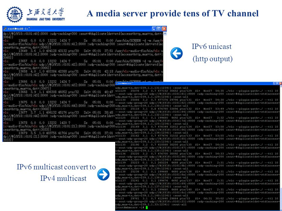 A media server provide tens of TV channel IPv6 unicast (http output) IPv6 multicast convert to IPv4 multicast