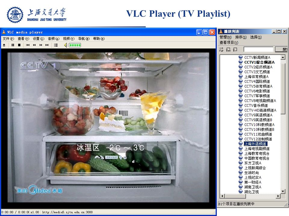 VLC Player (TV Playlist)