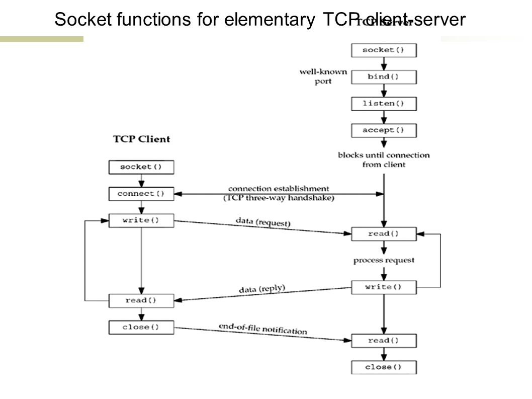 Socket functions for elementary TCP client-server