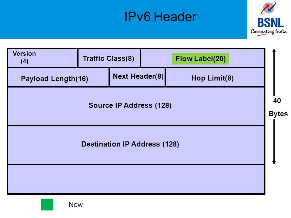 IPv6 Header Version (4) Destination IP Address (128) Traffic Class(8) Flow Label(20) Payload Length(16) Next Header(8) Hop Limit(8) Source IP Address (128) 40 Bytes New