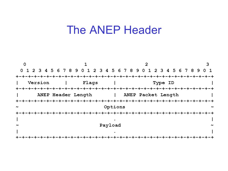 The ANEP Header 0 1 2 3 0 1 2 3 4 5 6 7 8 9 0 1 2 3 4 5 6 7 8 9 0 1 2 3 4 5 6 7 8 9 0 1 +-+-+-+-+-+-+-+-+-+-+-+-+-+-+-+-+-+-+-+-+-+-+-+-+-+-+-+-+-+-+-