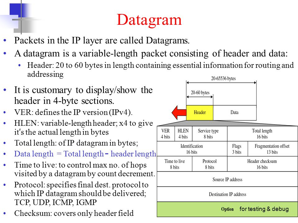 5 Datagram Packets in the IP layer are called Datagrams.