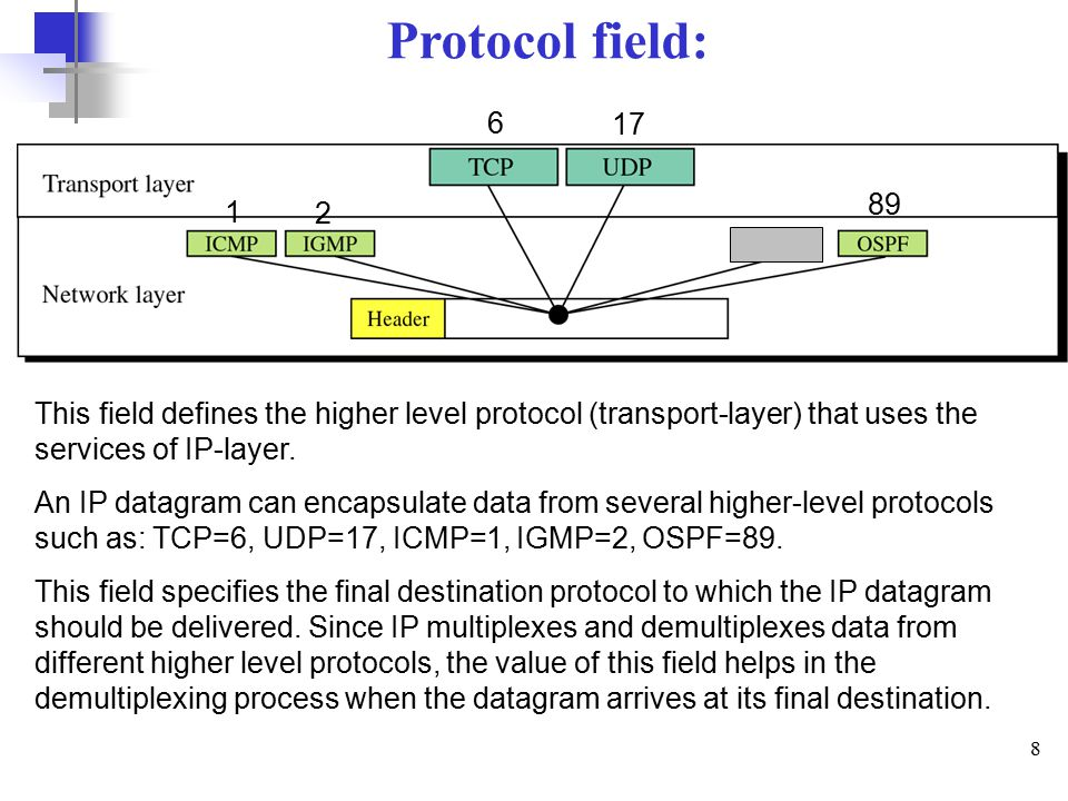8 Protocol field: This field defines the higher level protocol (transport-layer) that uses the services of IP-layer.