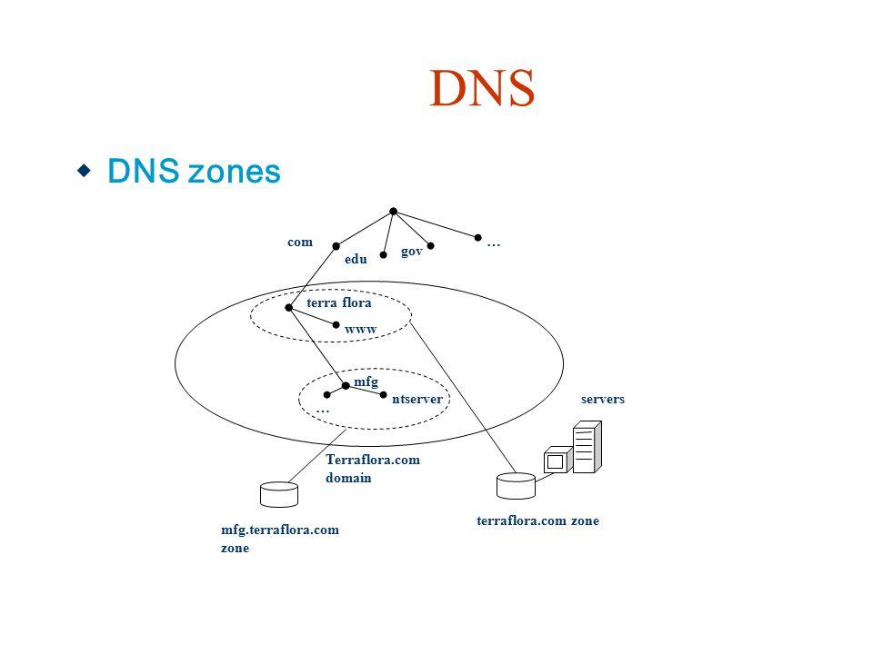 DNS  DNS zones terra flora www com edu gov … mfg ntserver … Terraflora.com domain mfg.terraflora.com zone terraflora.com zone servers