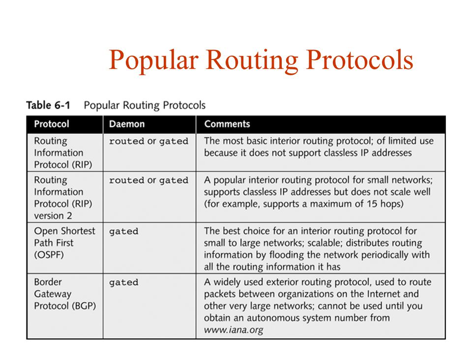 Popular Routing Protocols