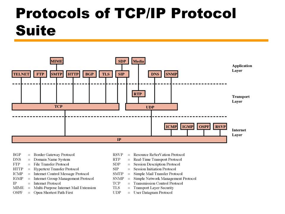 Protocols of TCP/IP Protocol Suite
